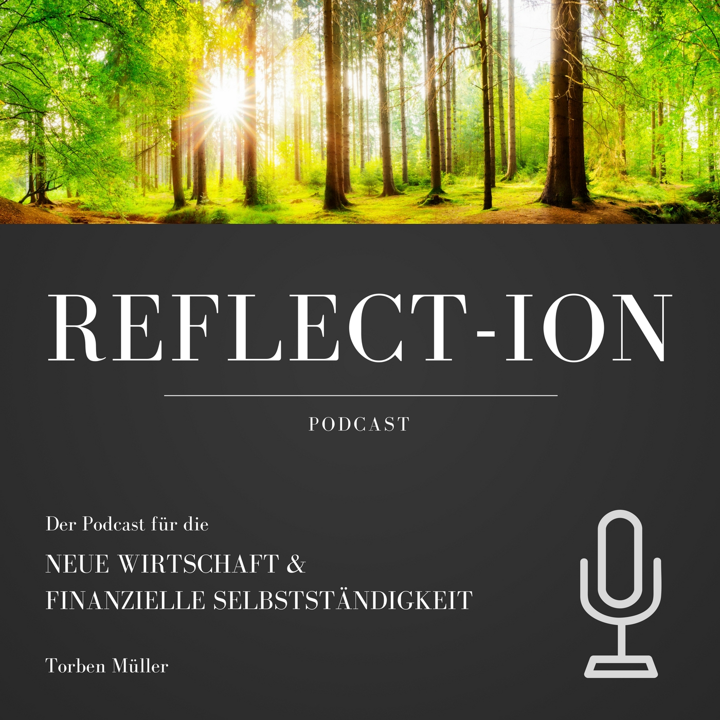 Reflect-Ion Podcast Cover
